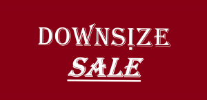 downsizesale.com logo